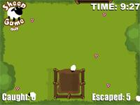 Sheep Game - Flashgame
